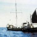 M.V. Oceaan VII